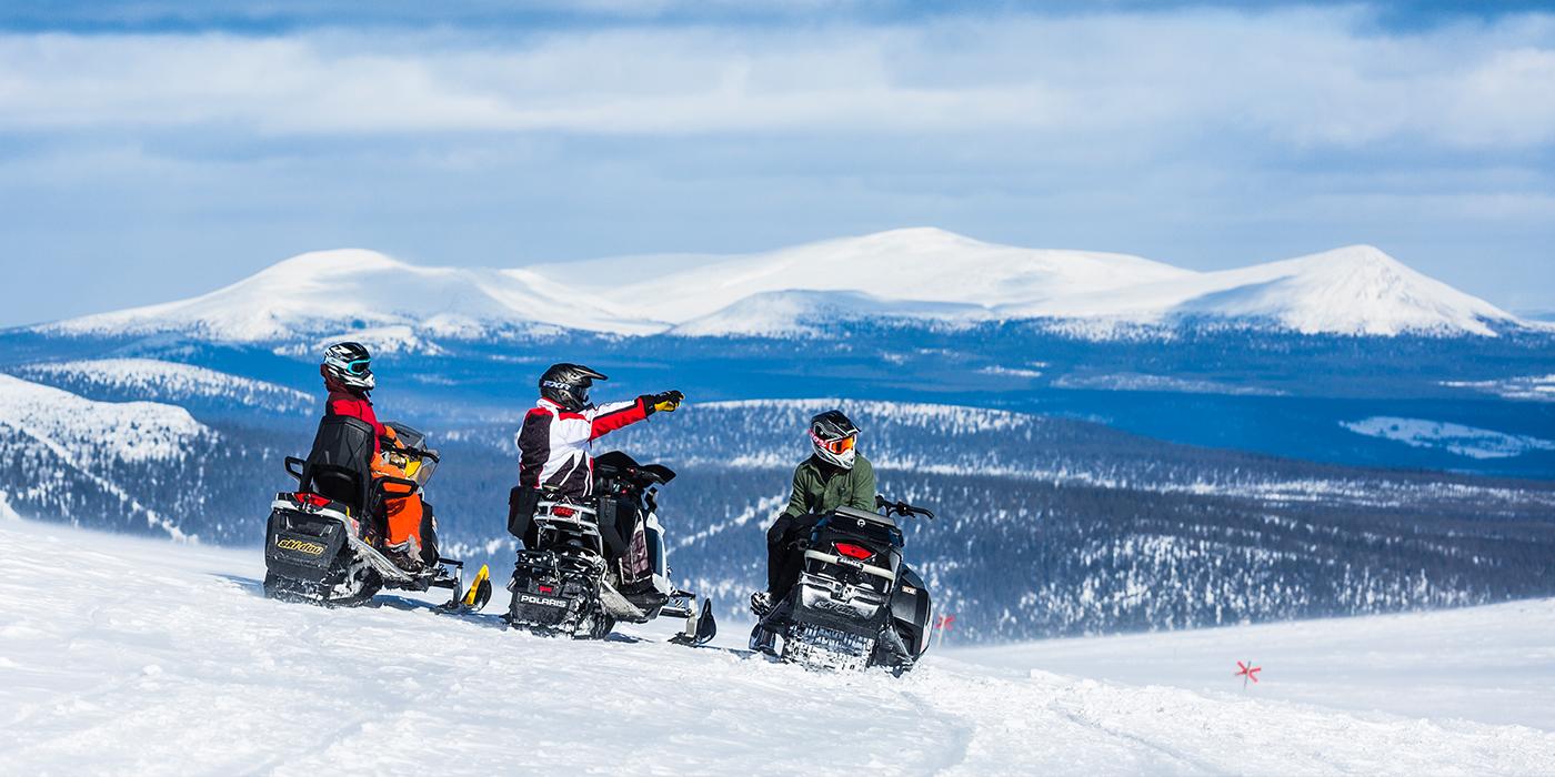 Digital guide lockar besökare till Lofsdalen